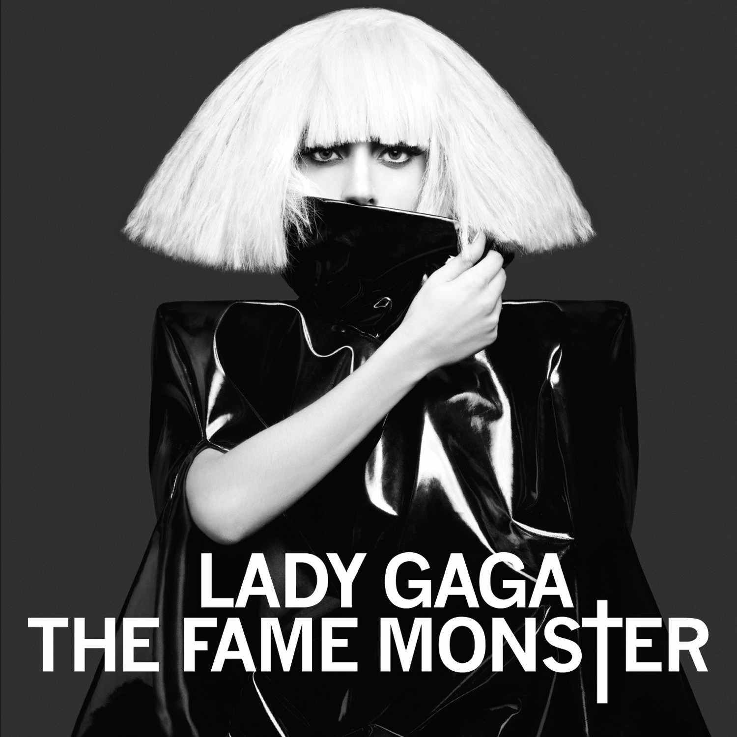 Lady gaga the fame monster book